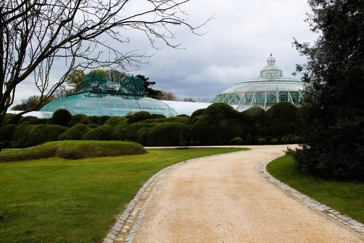 5 bonnes raisons d'aller visiter les Serres Royales de Laeken